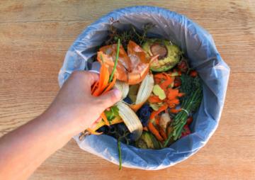 Journée internationale de sensibilisation aux pertes et gaspillages de nourriture